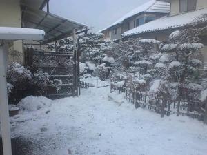 20140113実家雪.jpg